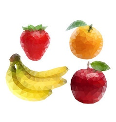 Fruit Polygon Art vector image