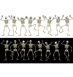 Fun skeletons vector image