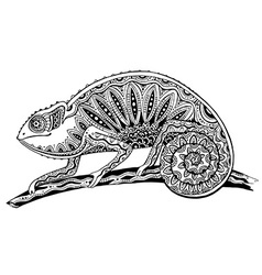 picture of black and white chameleon lizard in vector image vector image