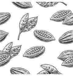 Seamless pattern with leaves and fruits of cocoa vector image