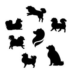 Ddwarf spitz silhouettes vector image
