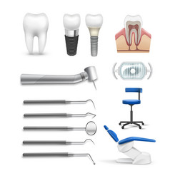 set of dental objects vector image