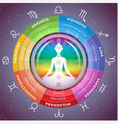 Yoga chakras infographics with meditating girl vector