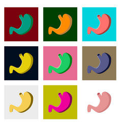 icons set in flat style human organ stomach vector image
