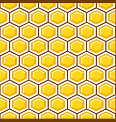 Honey comb pattern cells background vector