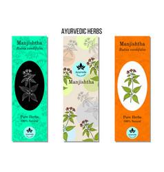 Ayurvedic herbs banners manjistha rubia vector