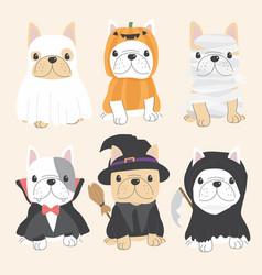 cute french bulldog dog in halloween costume flat vector image