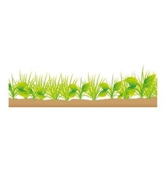 grass terrain field isolated icon vector image