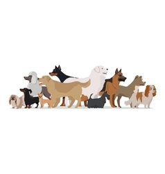 Group of Different Breeds Dogs vector