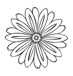 herbal flower icon simple style vector image