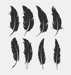 set of old feather for writing vector image vector image