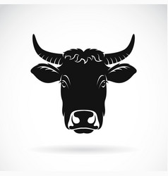 cow face on white background farm animal vector image vector image