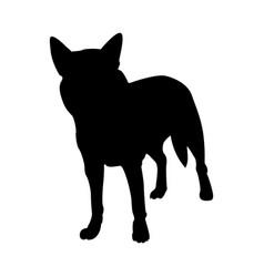 Australian dog silhouette vector