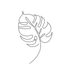 one single line drawing monstera leaf minimal vector image