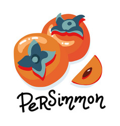 set with whole persimmons and slice and hand vector image