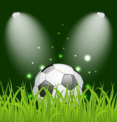 Soccer ball on green grass with light vector image