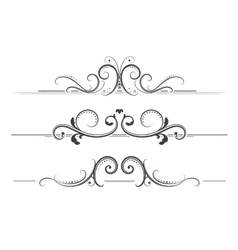 Swirly Divider vector
