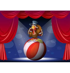 Turkey circus play vector