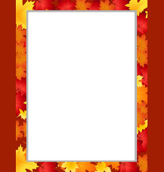 vertival frame with fallen autumn maple leaves on vector image