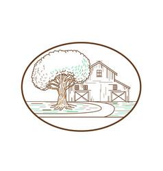 American barn oak tree mono line oval vector