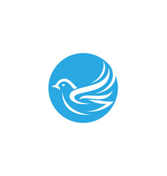 Bird dove logo template vector