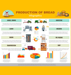Bread production infographics vector