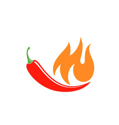 Chilli pepper vector