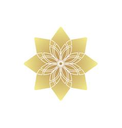 circular geometric ornament ornamental vector image