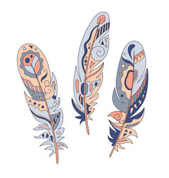 feathers decorative set hand drawn vector image