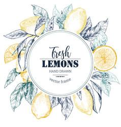 frame with hand drawn fresh lemon tree vector image