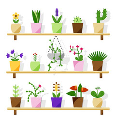 indoor potted plants isolated on white vector image