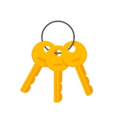 Keys on key ring isolated vector image