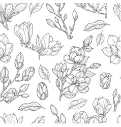 magnolia pattern sketch flower ornate seamless vector image