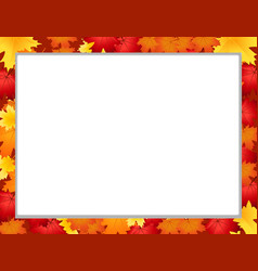 photo frame with fallen autumn maple leaves on vector image