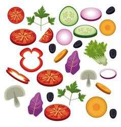 Salad vegetables food diet healthy vector