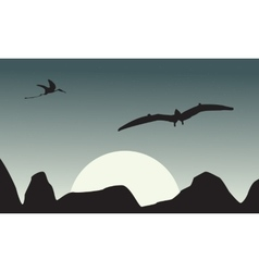 Silhouette of pterodactyl on sky scenery vector image vector image