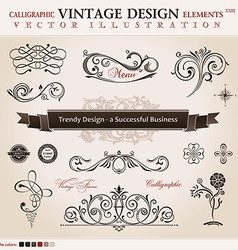 Set classic calligraphic design elements and book vector