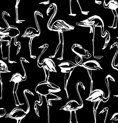 Tropical exotic birds flamingos summer seamless vector image