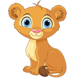 Lion king cub vector image vector image