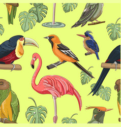 Exotic colorful birds pattern vector