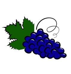 Grape icon vector