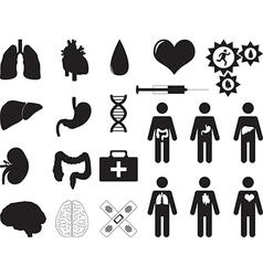 Human organs and medical tools vector