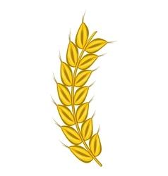 Stalk of ripe barley icon cartoon style vector