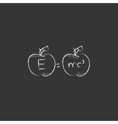 Two apples with formulae Drawn in chalk icon vector