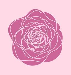 red rose flower vector image