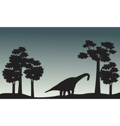 Scenery of brachiosaurus and tree silhouette vector image vector image