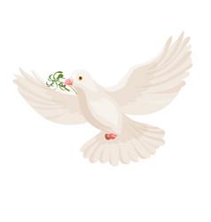 White dove with grass in beak flying bird vector