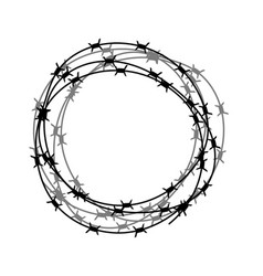 barbed wire circle isolated on white backgground vector image