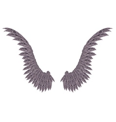 Dark Wings vector image