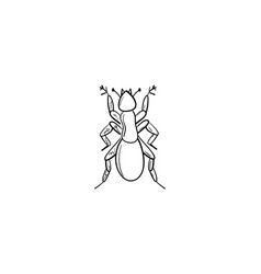 hand drawn ant outline doodle icon ant sketch for vector image